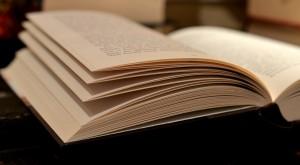 成功体験の本